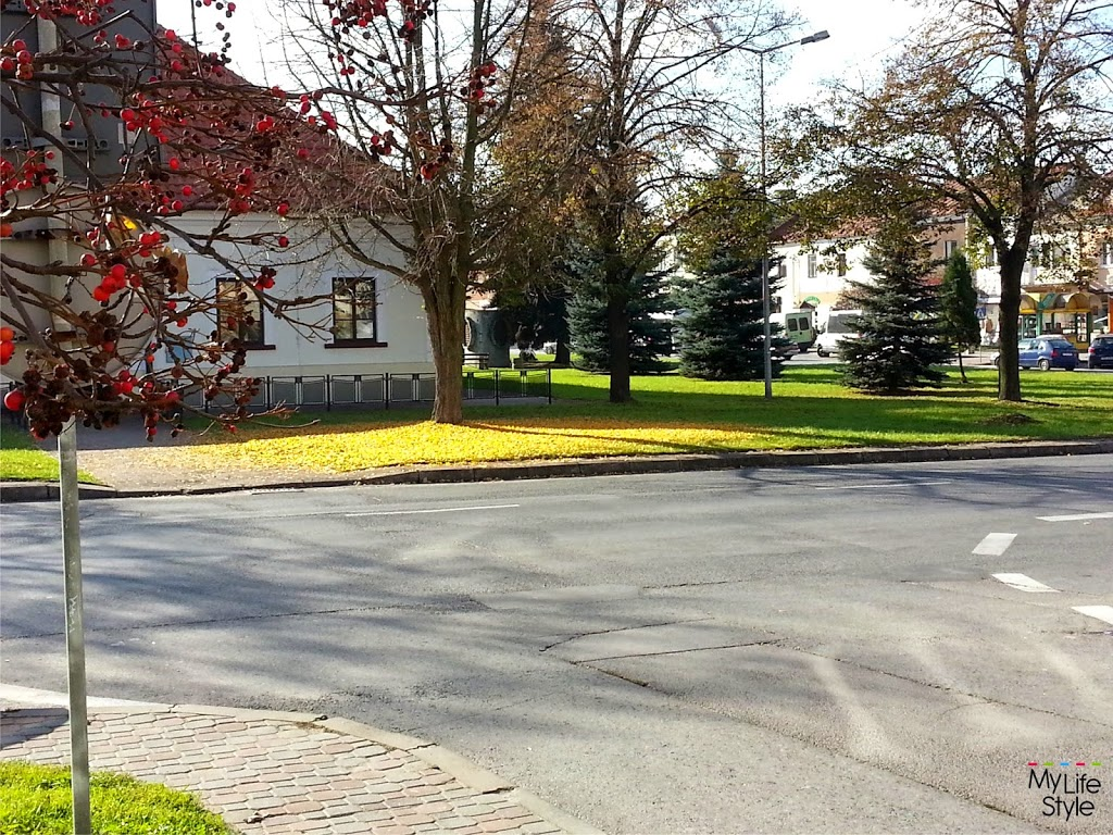 Podsumowanie miesiąca – wrzesień, październik i listopad w moim obiektywie